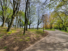 woodland area with pathway to a park